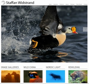 staffan-W-home-page
